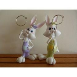 Lapin bunny garçon moyen...